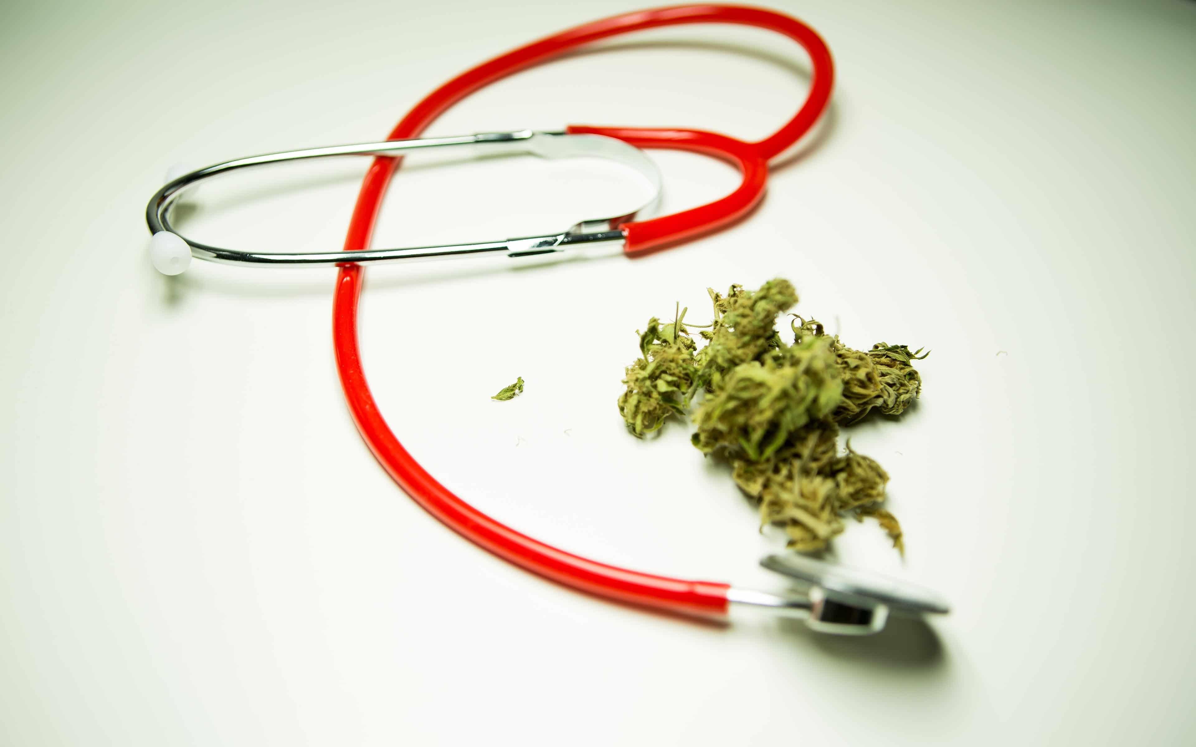 Nación Cannabis | Beneficios del cannabis para el tratamiento del Alzheimer