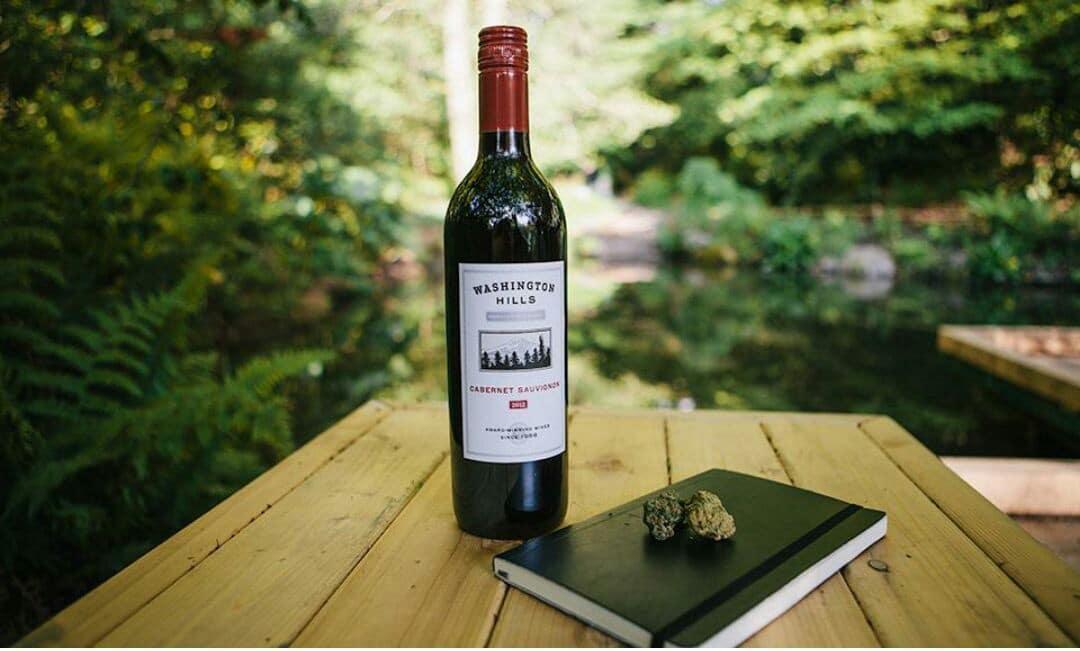 Nación Cannabis | Vinicultores aprovechan viñedos para cultivo de cannabis