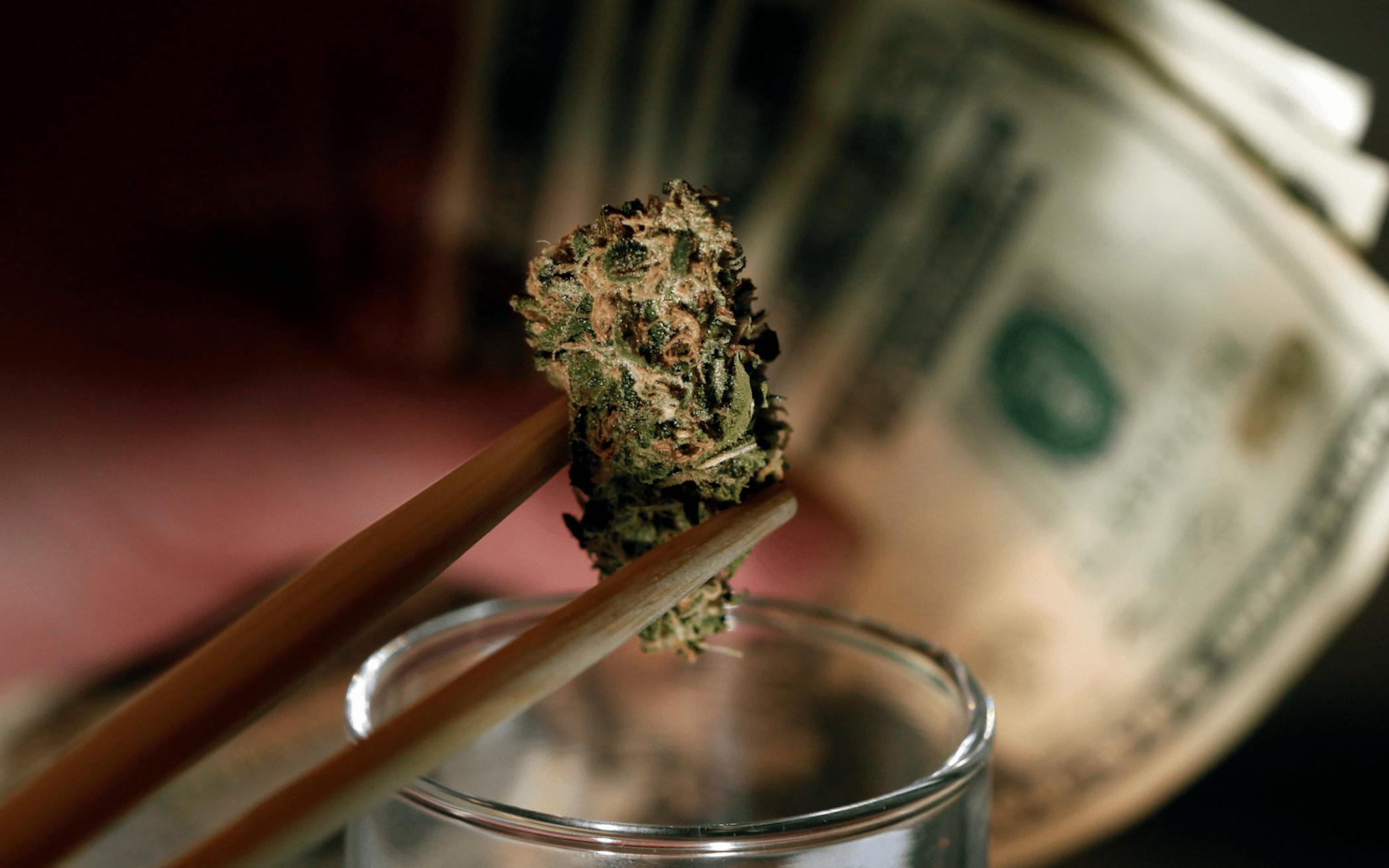 Nación Cannabis | Marihuana en la Bolsa hace Boom: firmas crecen hasta 5000%
