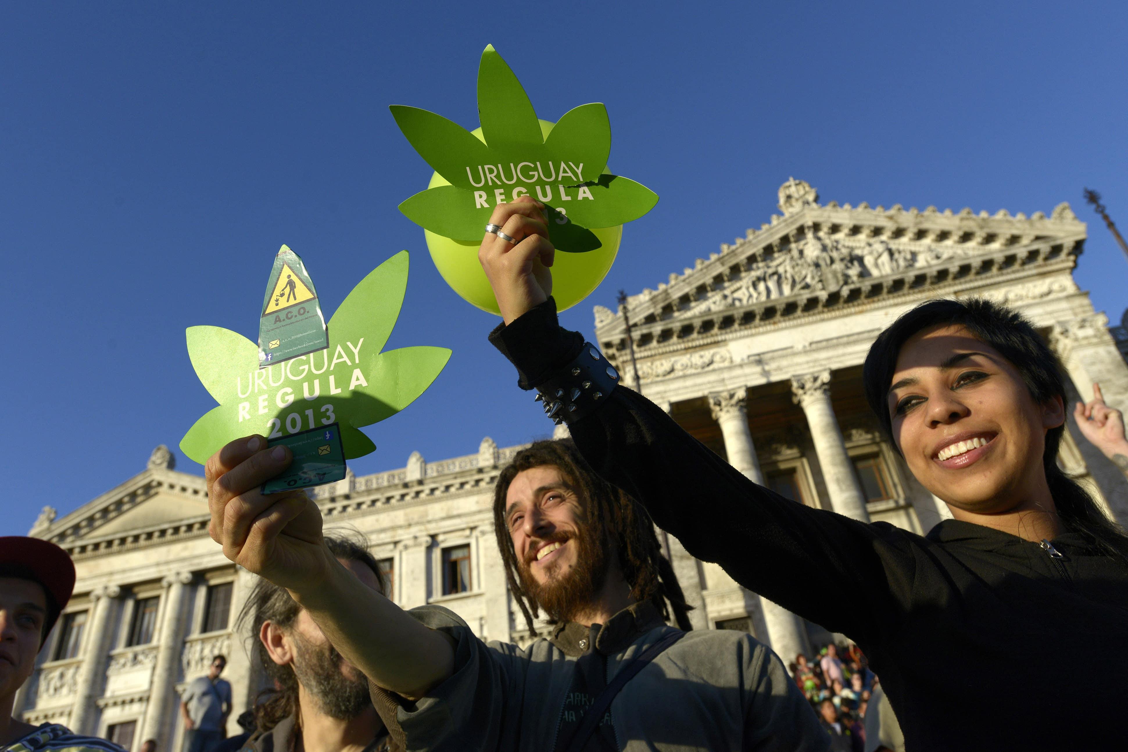 Nación Cannabis | Casi 4 mil uruguayos se apuntan para comprarle marihuana legal a su gobierno