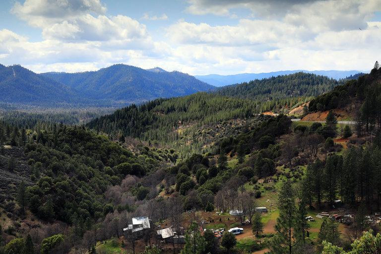 Los Hmong cultivarían marihuana en California