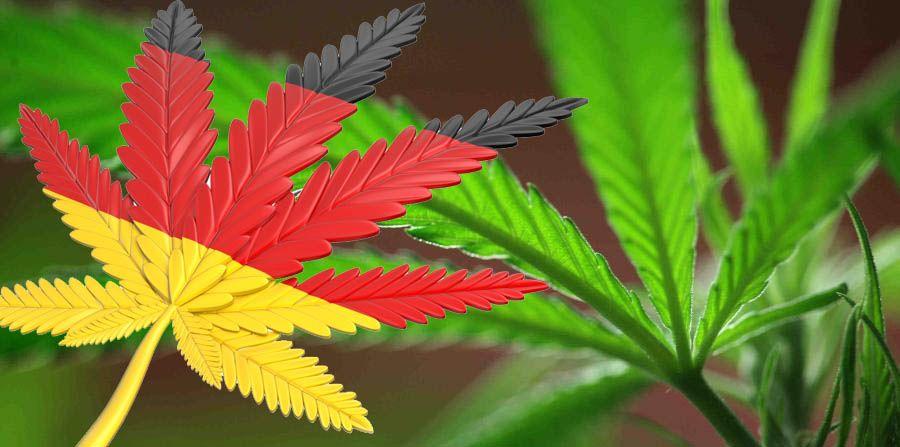 Nación Cannabis | Elecciones en Alemania: ¿Marihuana terapéutica seguirá vigente?