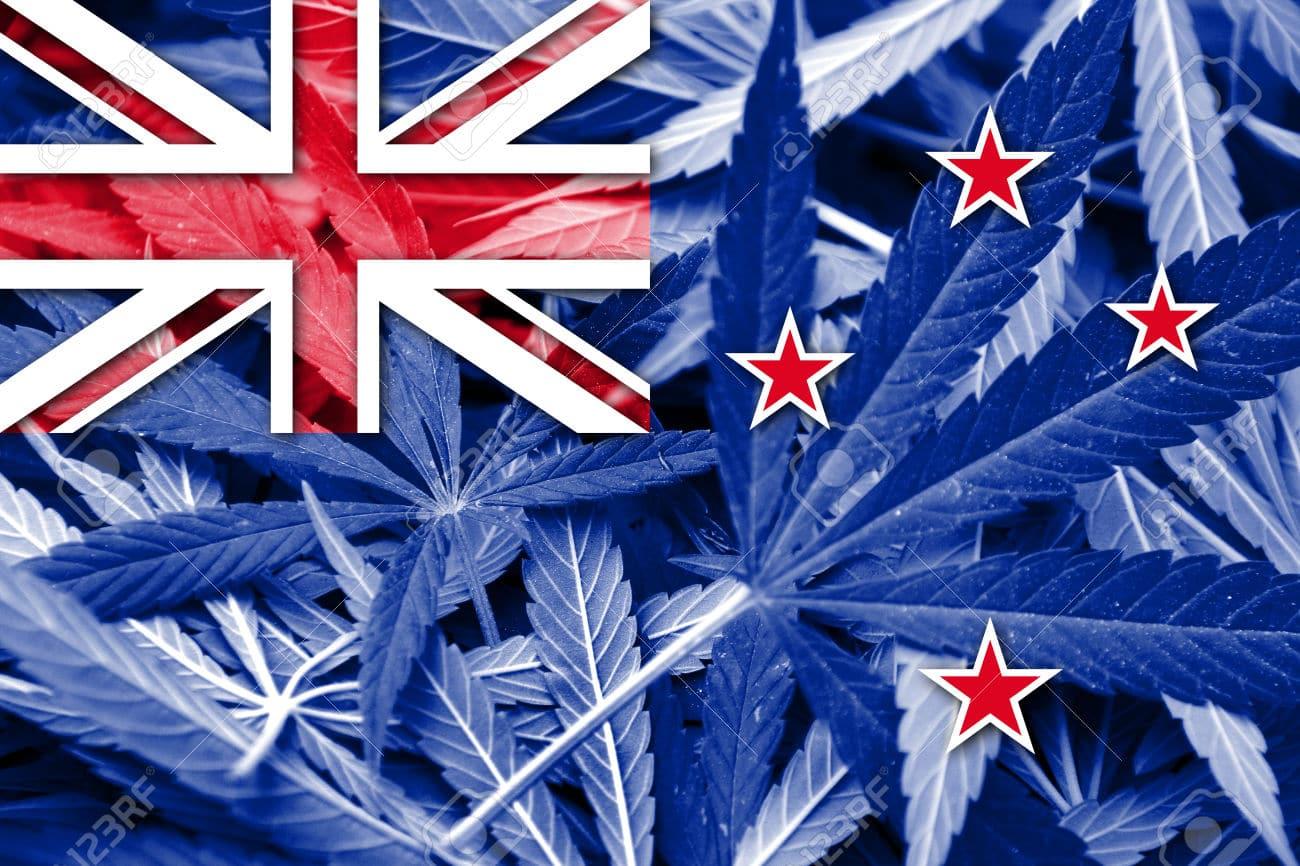 Nación Cannabis | Legalización de mariguana medicinal en Nueva Zelanda