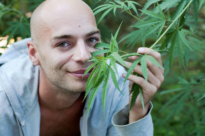 Nación Cannabis | Pacientes neozelandeses con cáncer reclaman su derecho a cannabis medicinal