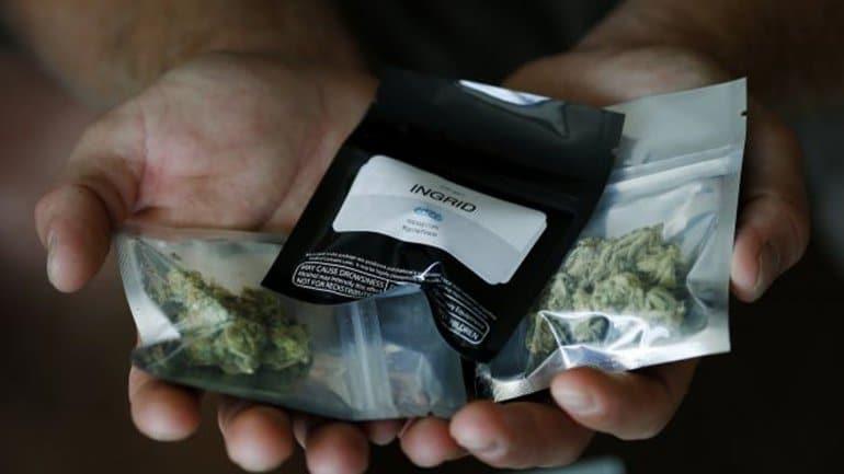 Nación Cannabis | Las empresas de cannabis a domicilio en Nevada apenas pueden con tantos pedidos