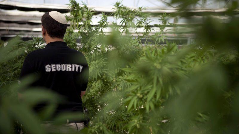 Nación Cannabis | Autoridades religiosas de Estados Unidos ven con buenos ojos la legalización de la cannabis