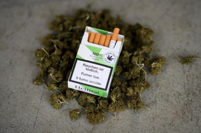 Nación Cannabis | Cigarros de marihuana de alto CDB llegan a Suiza