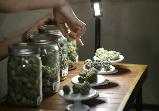 Nación Cannabis | La venta de marihuana en Nevada rebazará los 30 millones de dólares en pocos meses
