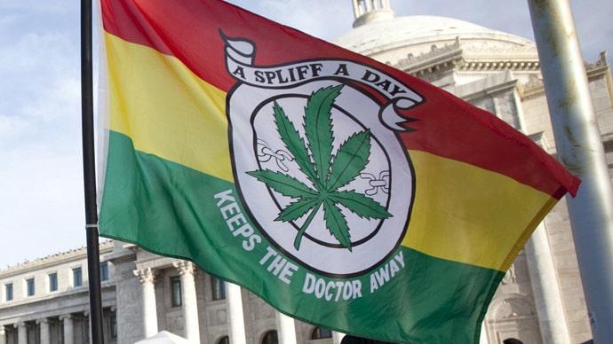 Nación Cannabis | La marihuana podría ser la gran industria que saque a Puerto Rico de la pobreza