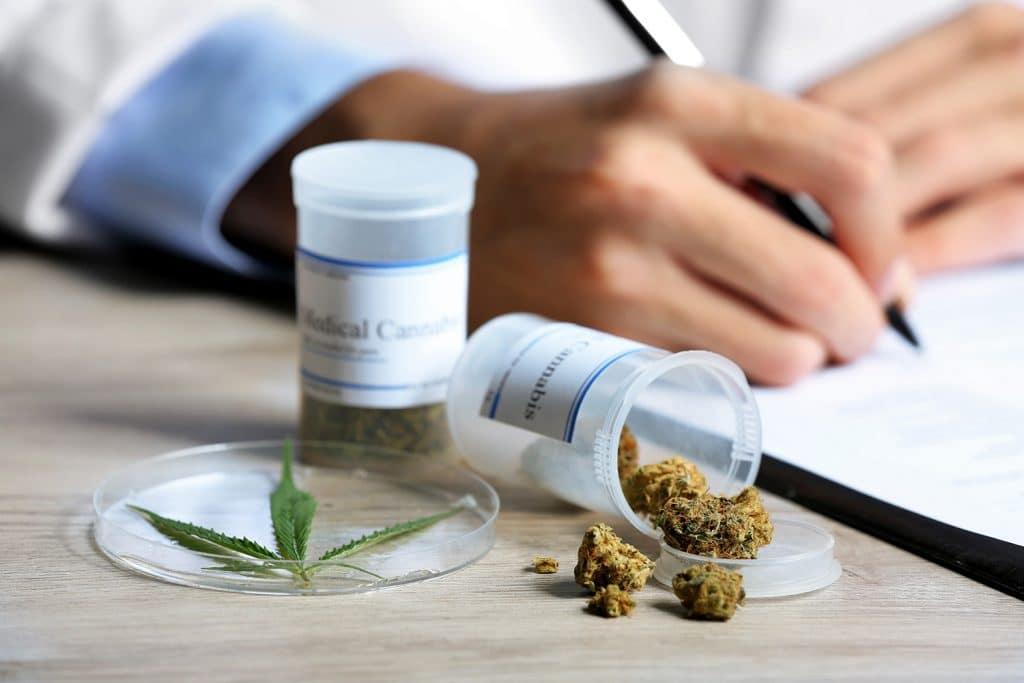 control del dolor con cannabis
