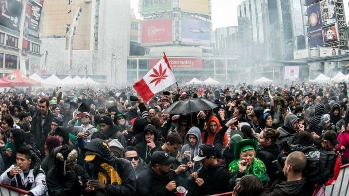 Nación Cannabis | Canadá apostó a tiempo y está dominando la industria cannábica mundial