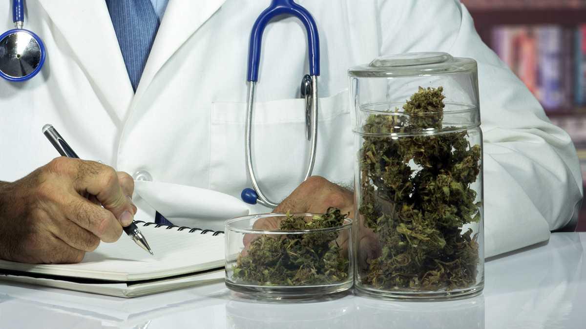 Nación Cannabis | Se desempeña con gran éxito la primera clínica cannábica de México