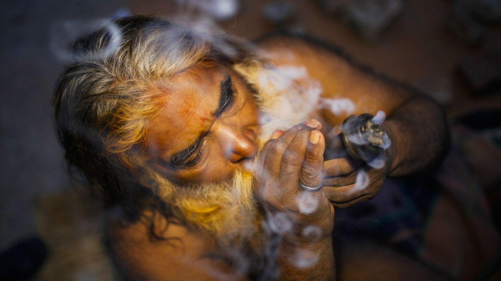 Nación Cannabis | La India se prepara para una posible legalización de la cannabis medicinal