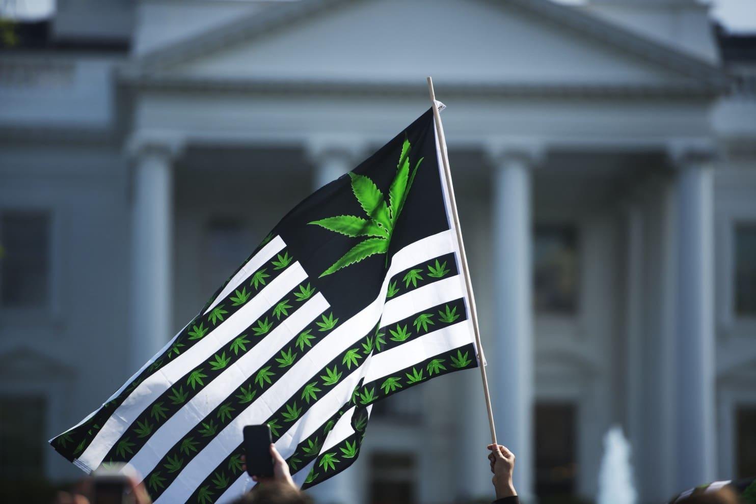 Nación Cannabis | La mayoría de republicanos ya apoyan la legalización de la marihuana en EU
