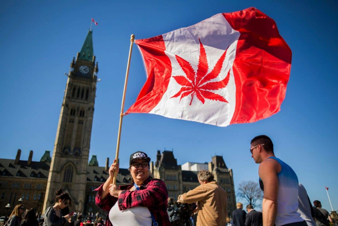 Nación Cannabis | Precios de cannabis en Canadá caen a meses de que se abra su mercado