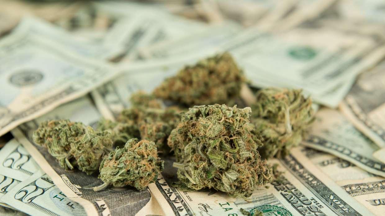 Nación Cannabis | Legalizar cannabis en todo EU podría generar USD$132,000 millones en impuestos
