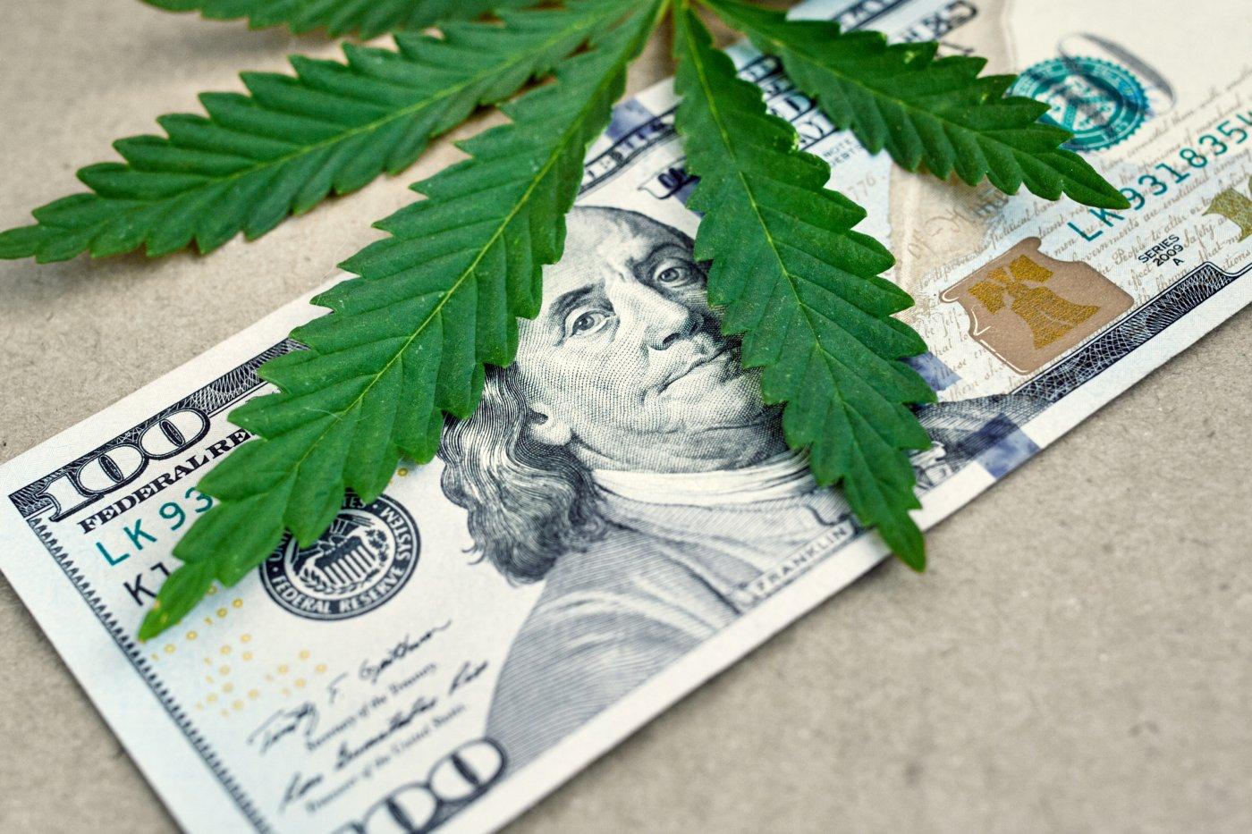 Nación Cannabis | Legalización de la marihuana en el mundo, ventajas e incertidumbres