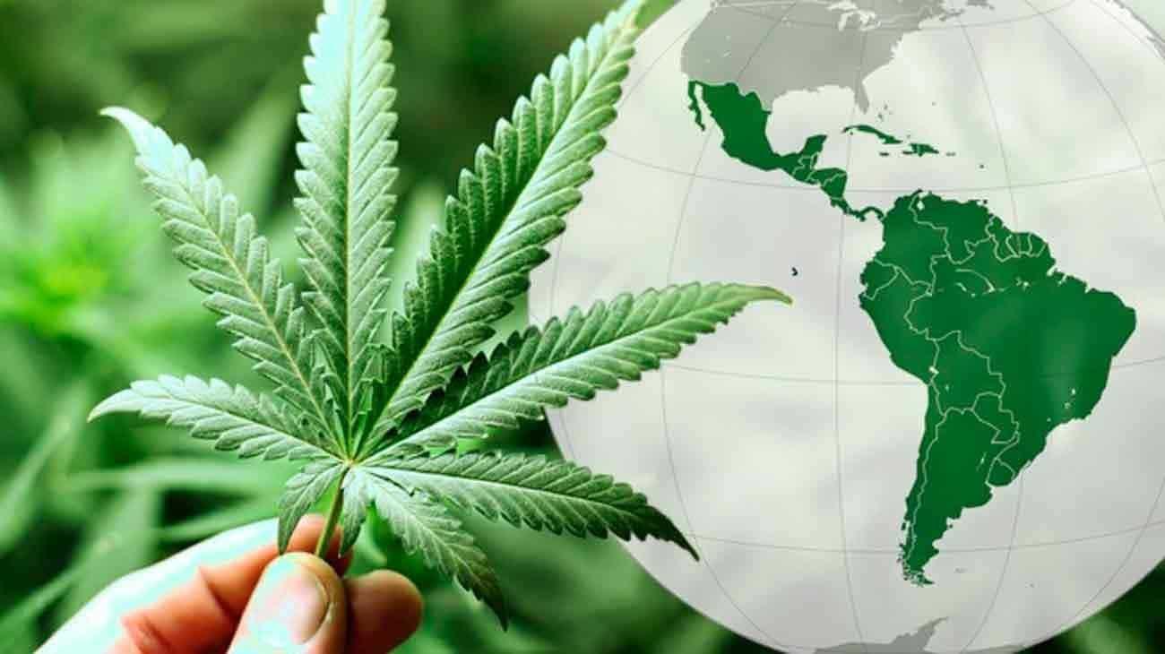 Nación Cannabis | 2019: el estado de la industria del Cannabis en América Latina