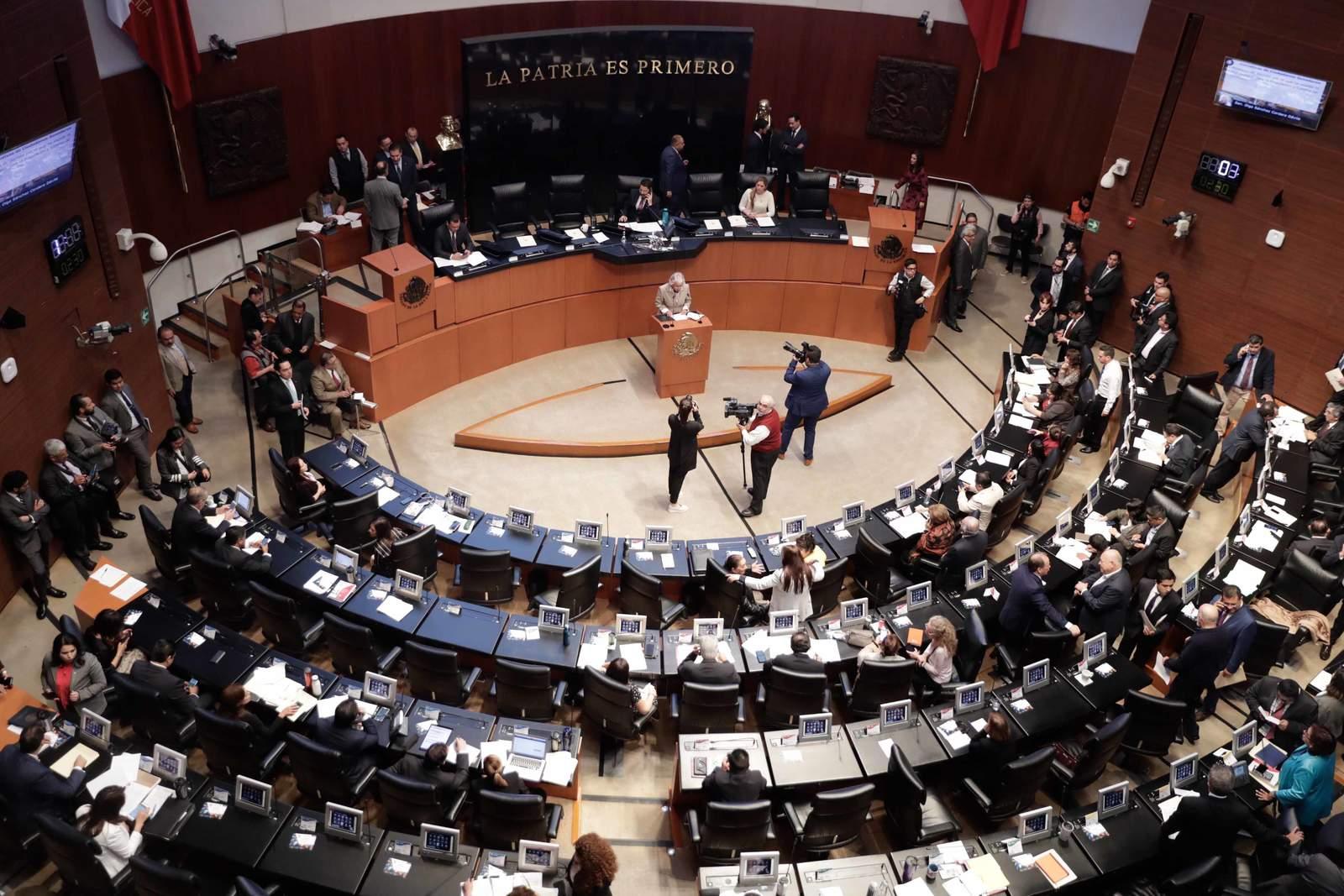Nación Cannabis | Senado: México podría ser líder en la producción legal de cannabis y cáñamo