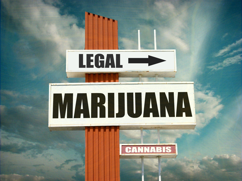 Nación Cannabis | El estado de la legalización de la mariguana en los Estados Unidos