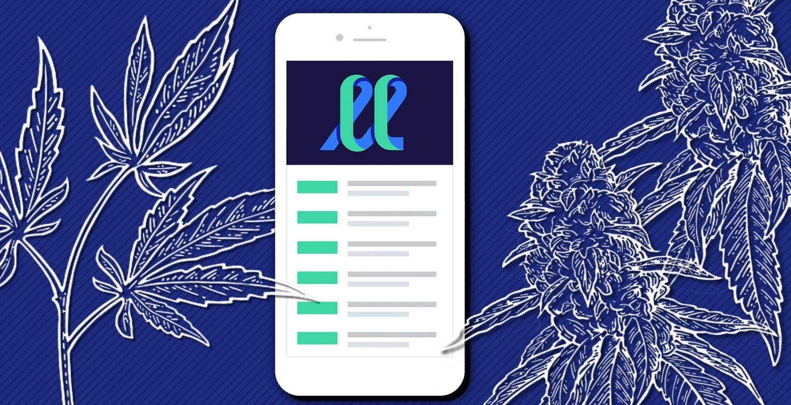 Nación Cannabis | LeafLink obtiene 35 millones para su tienda online de cannabis