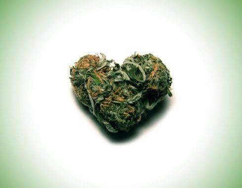 ¿La cannabis inhalada afecta el corazón?