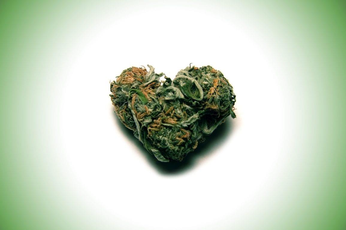 Nación Cannabis | ¿La cannabis afecta al corazón?
