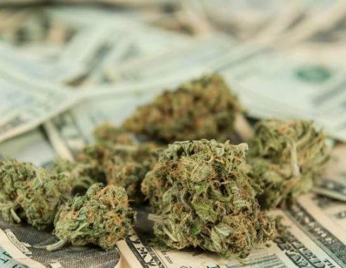 Cada vez más gente quiere invertir en marihuana medicinal