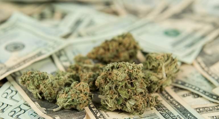 Nación Cannabis | Cada vez más gente quiere invertir en marihuana medicinal