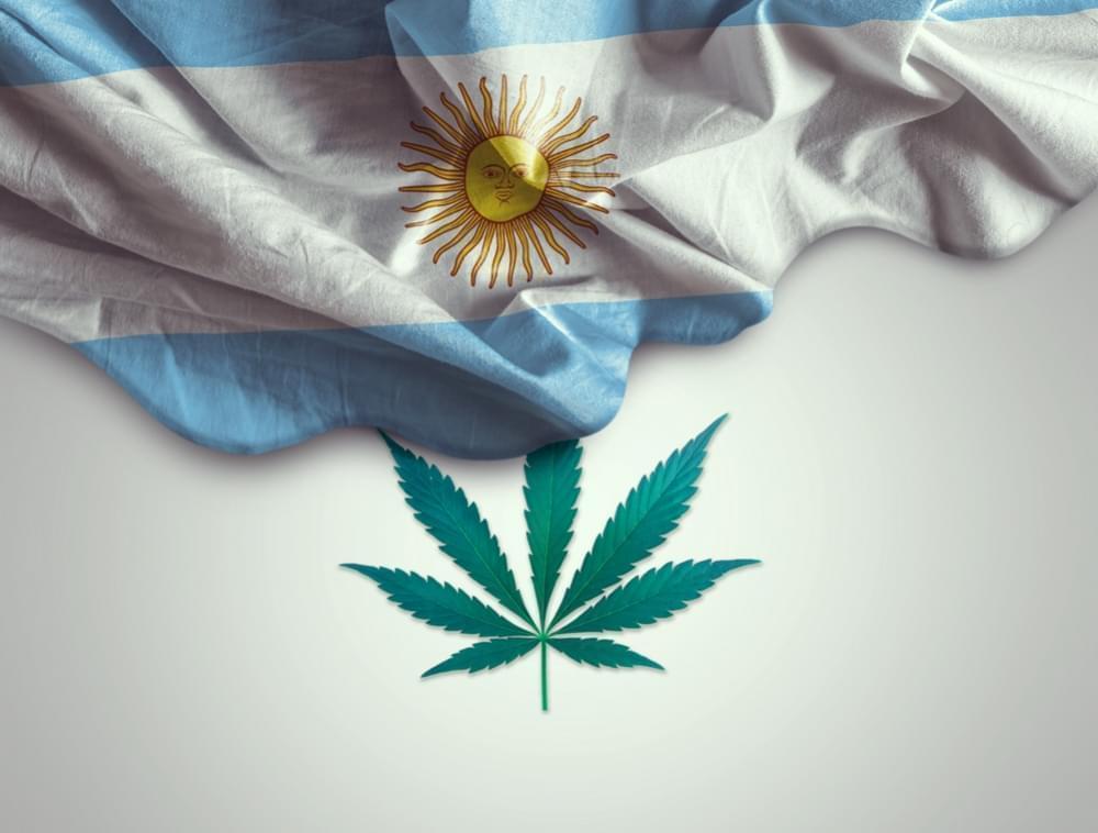 Nación Cannabis | ONGs van por la regulación del cannabis en Argentina