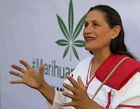 México tendrá buena legislación de la cannabis