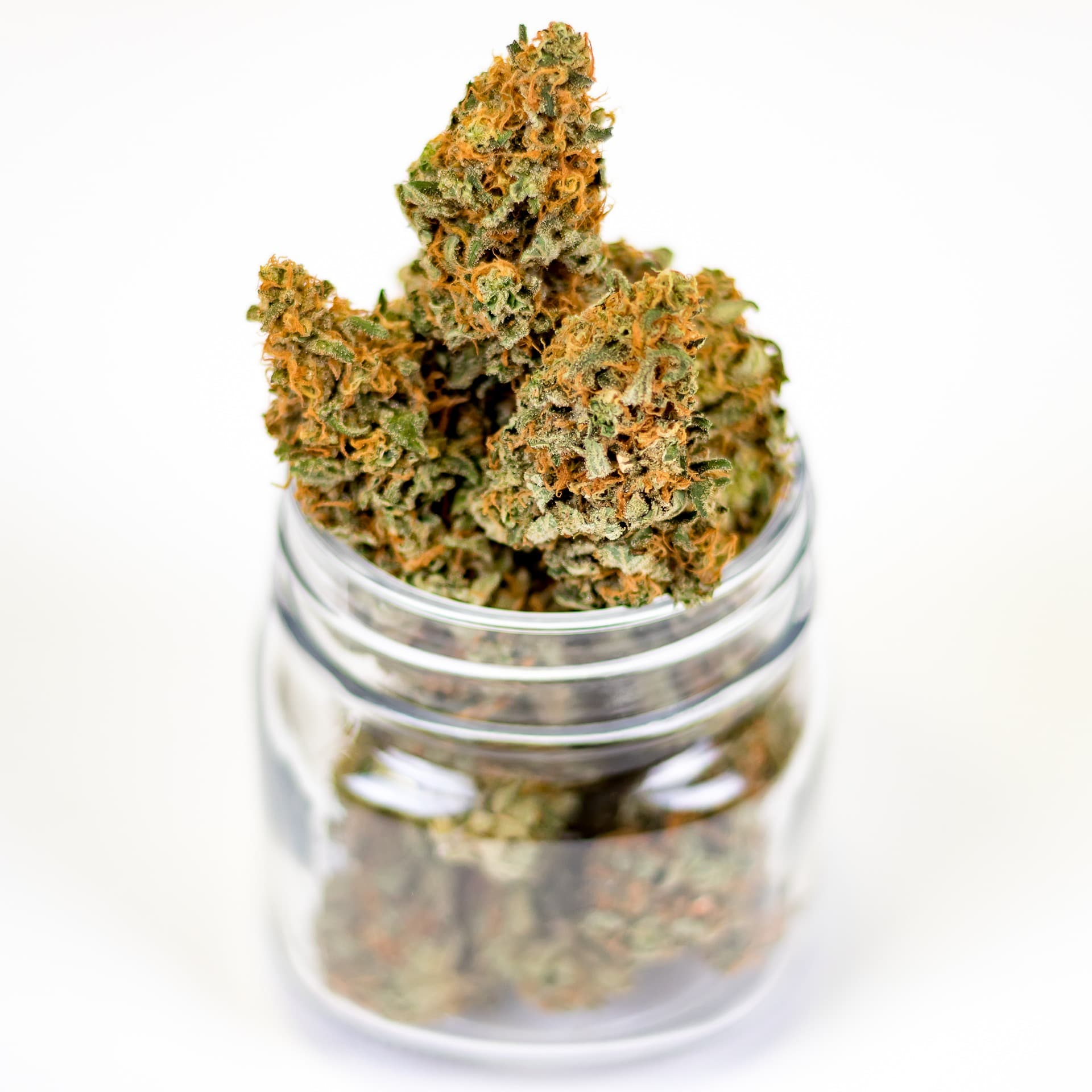 Nación Cannabis | Gobierno paraguayo da primer paso para industrializar cannabis medicinal