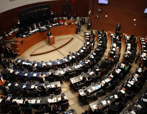 Senado de la Republica propuesta legalización cannabis