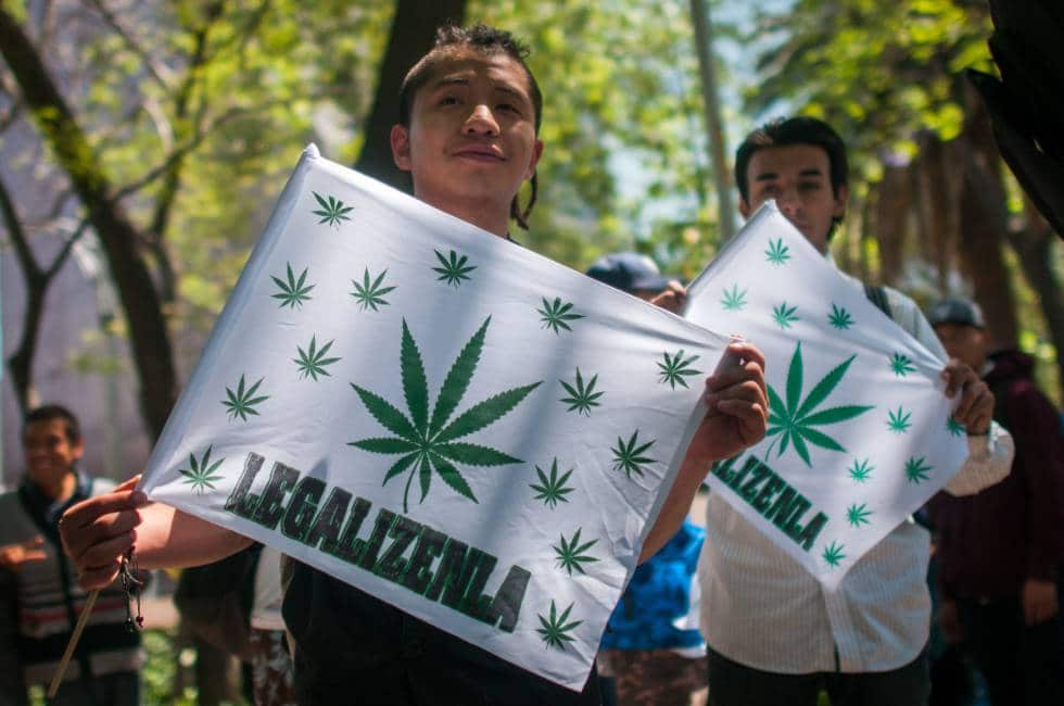Legalización cannabis mexico