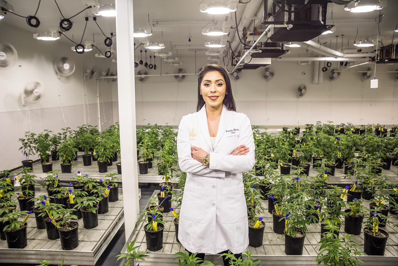 Nación Cannabis | Esta empresaria es la reina del Cannabis en EEUU