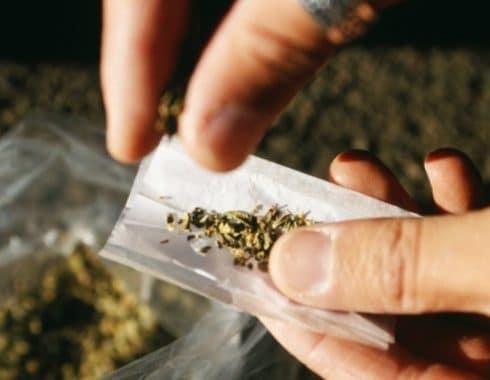 Consumo personal cannabis