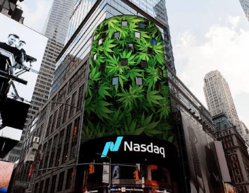 La estrepitosa caída de las acciones del cannabis