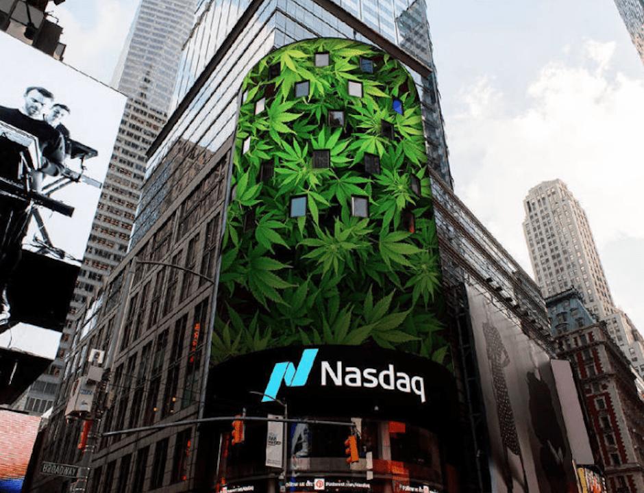 Nación Cannabis | La estrepitosa caída de las acciones del cannabis