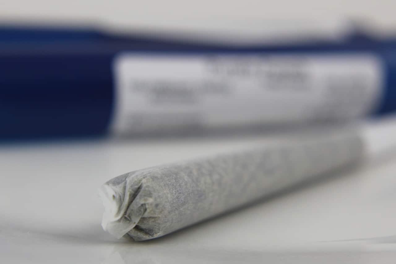Nación Cannabis | Emprendedores que venden cannabis cuentan sobre su consumo
