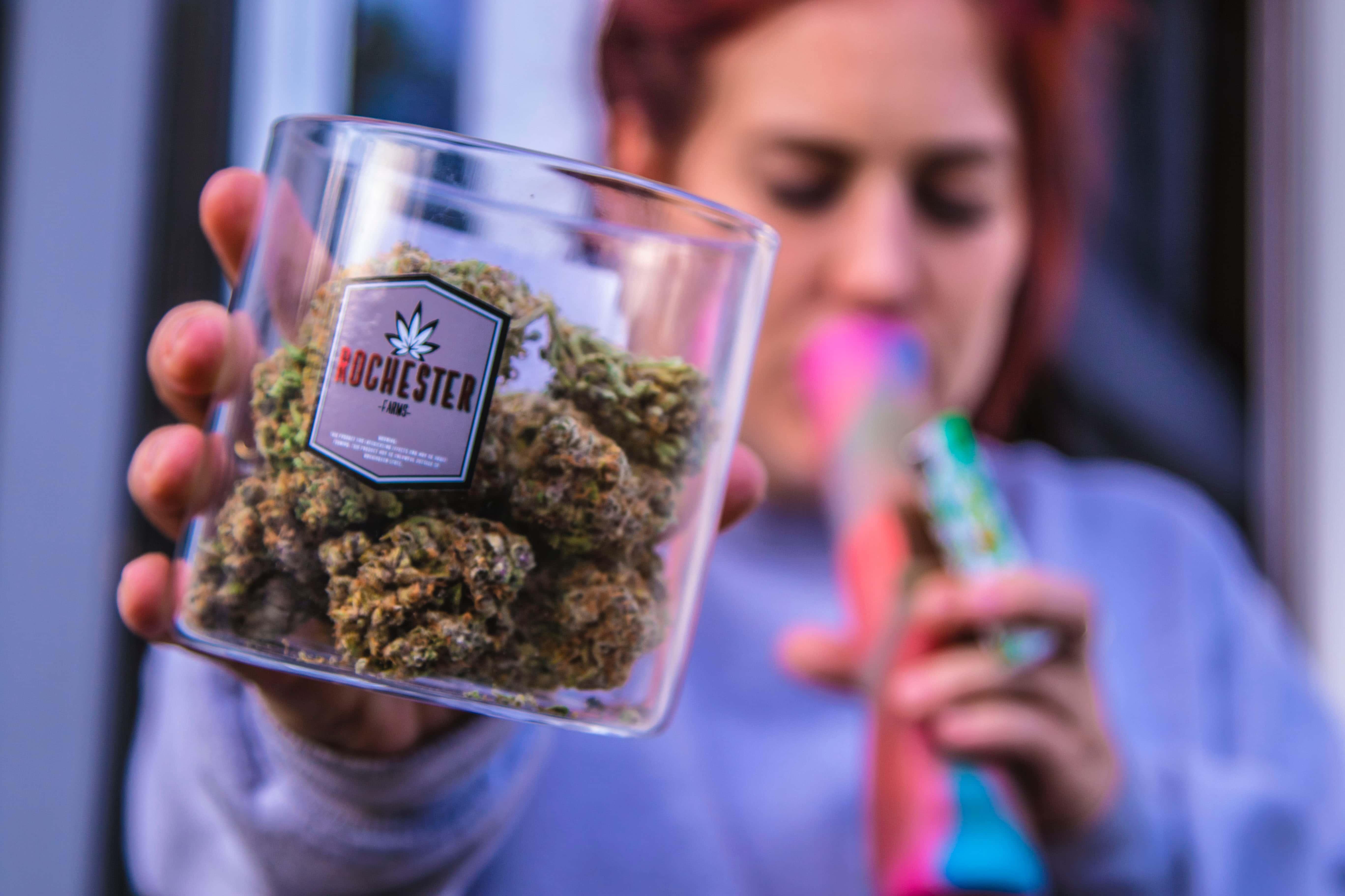 Nación Cannabis | 4 tendencias de la industria cannábica que debes de considerar