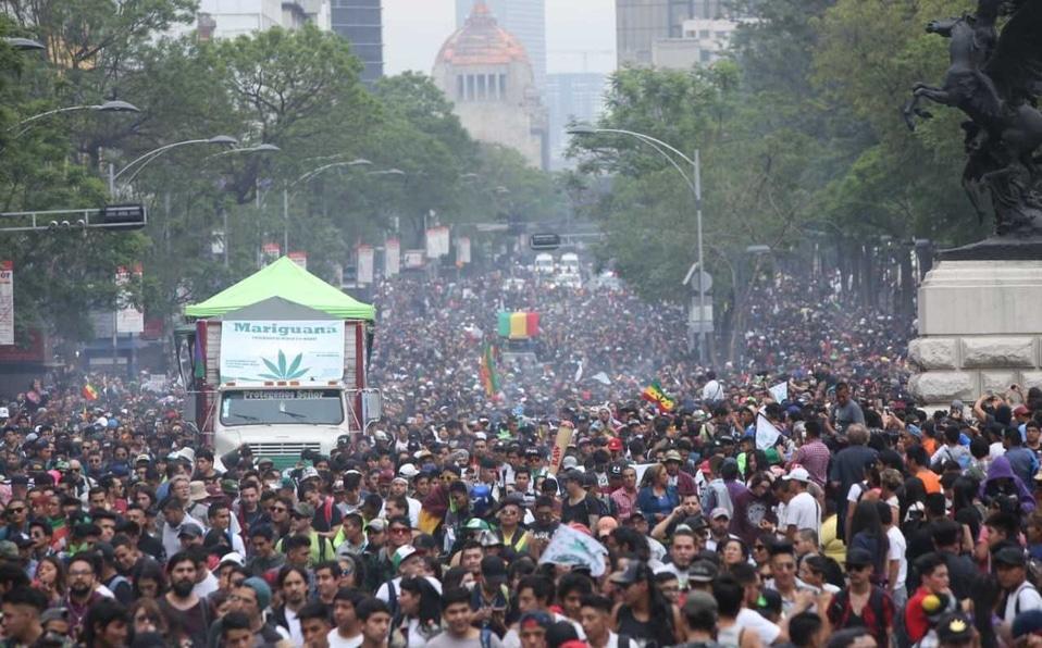 Nación Cannabis | Conoce 12 iniciativas que podrían legalizar el cannabis en México