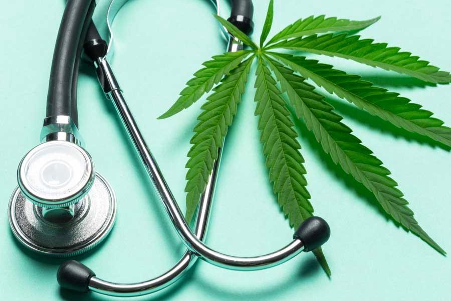 Nación Cannabis | Sin resultados, investigaciones sobre efectos inmunes del cannabis