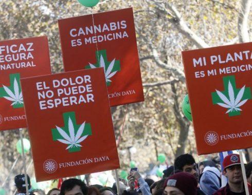 Perú cannabis medicinal