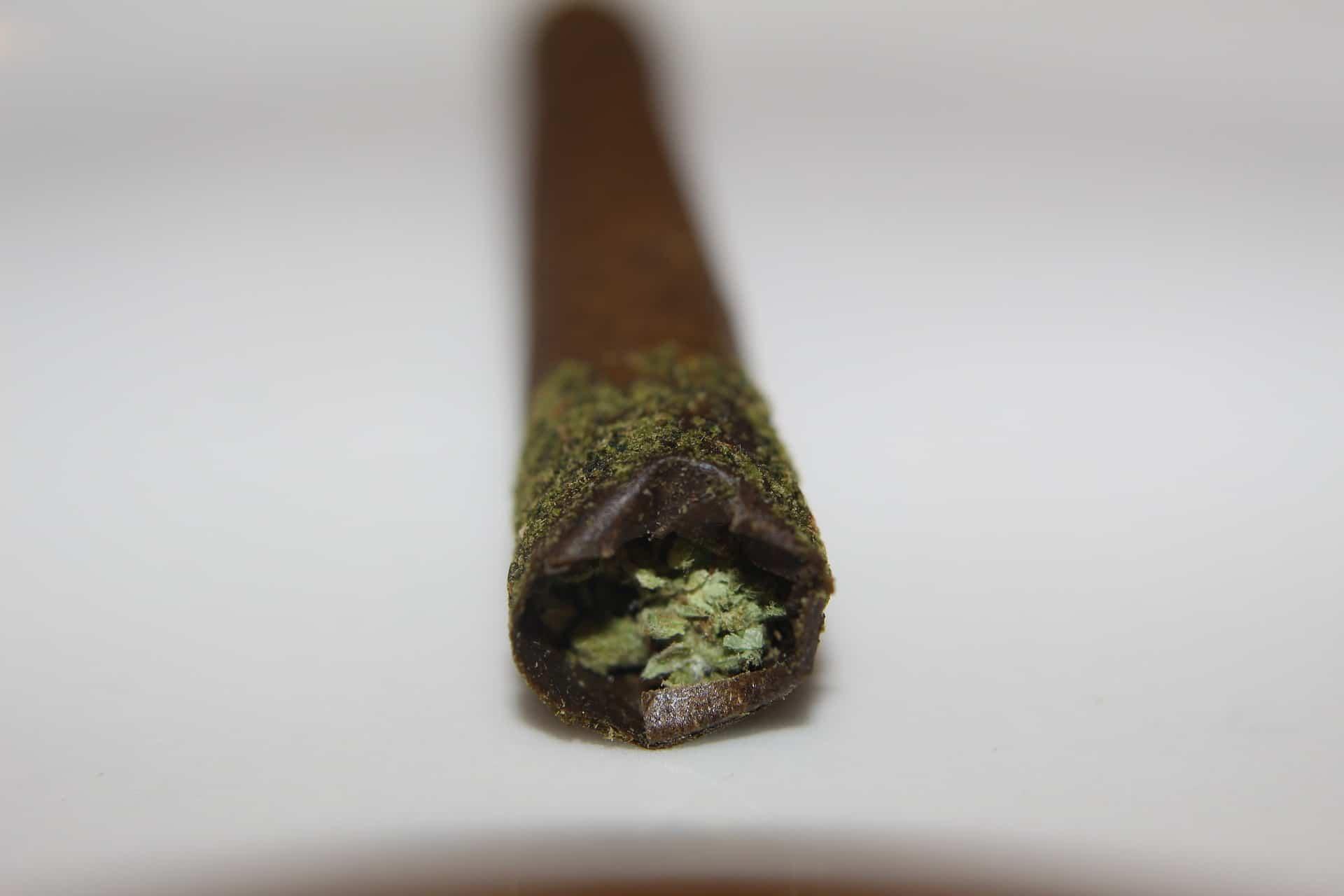 Nación Cannabis | Quitarán límite de portación de marihuana en México
