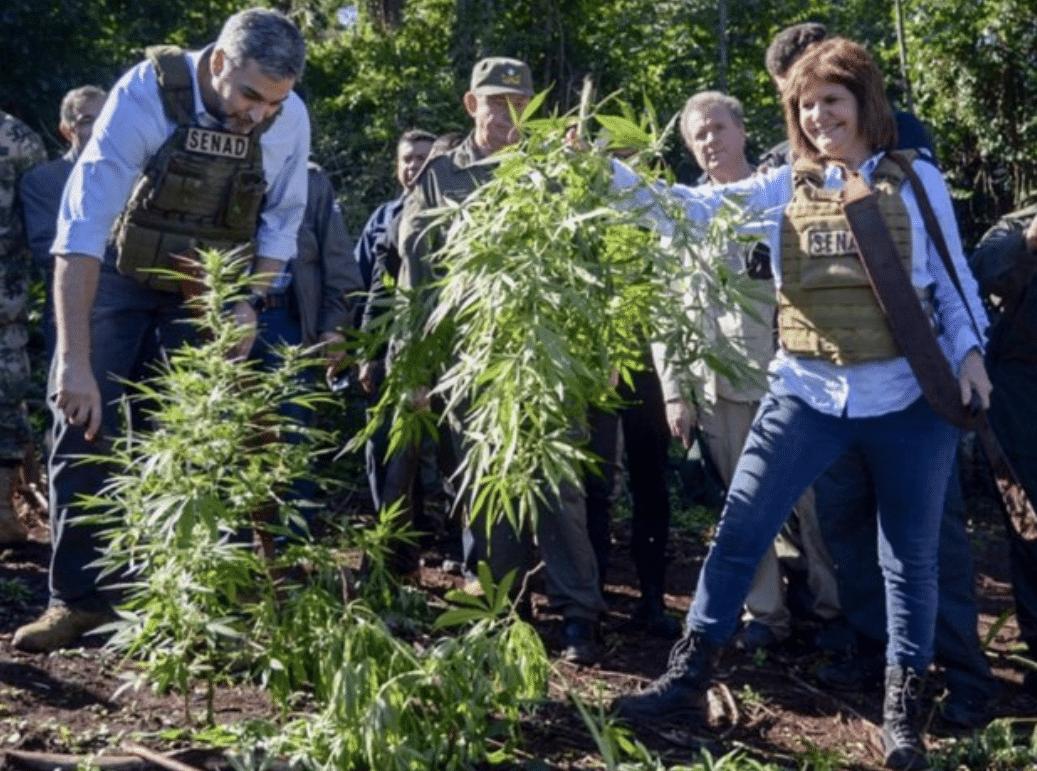 Nación Cannabis | Exministra argentina afirma que la marihuana ha causado miles de muertes