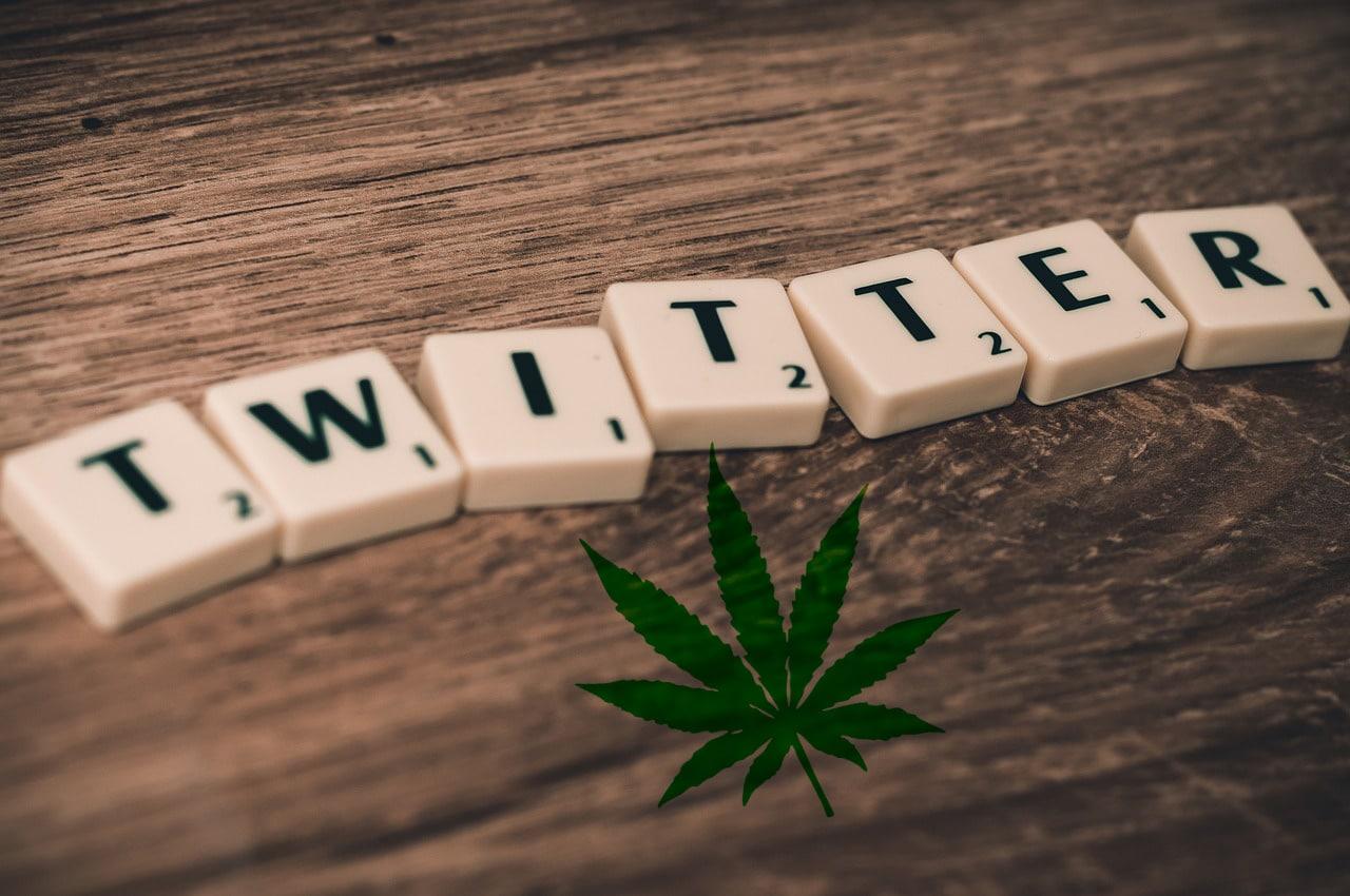 Nación Cannabis | Bots difunden mensajes engañosos sobre el cannabis