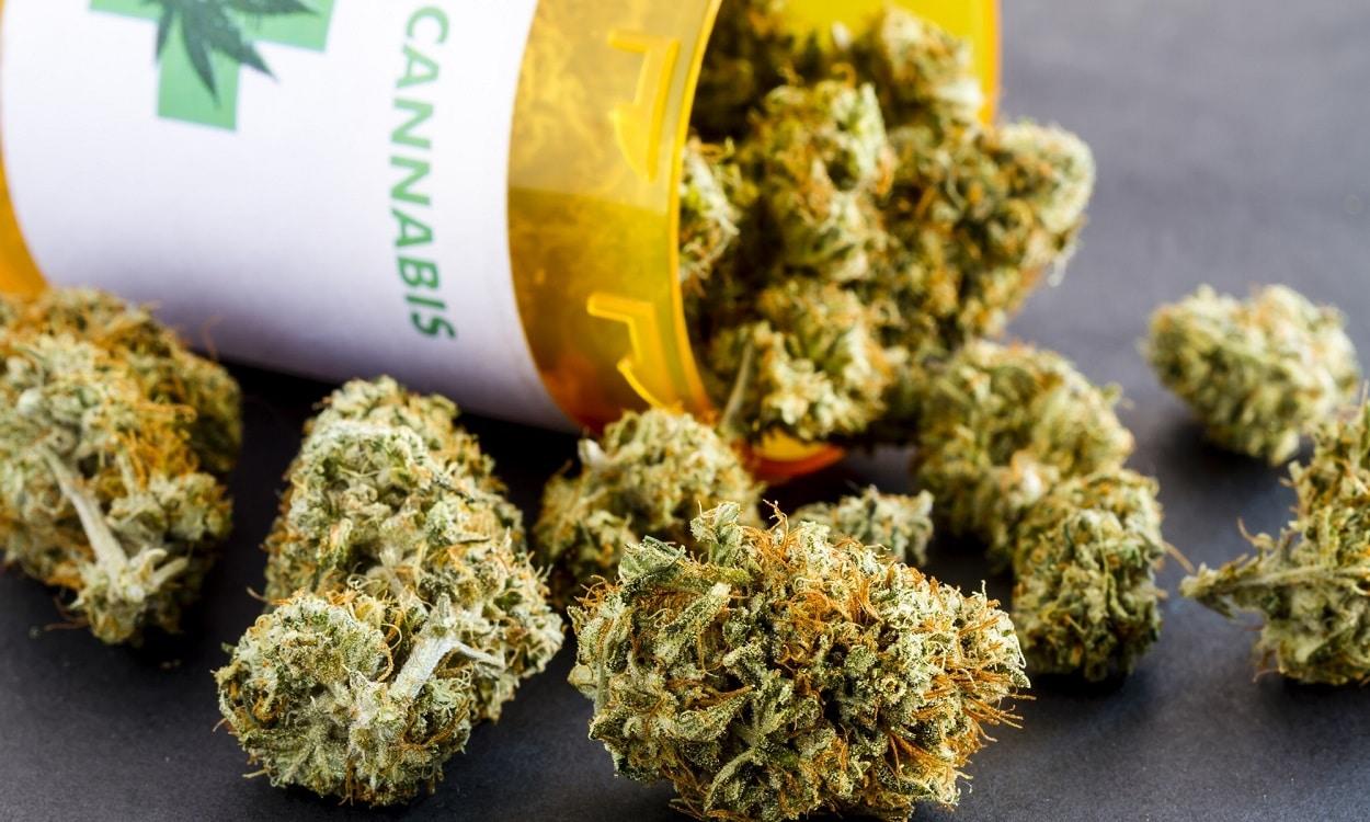 Nación Cannabis | ¿Dónde y cómo conseguir cannabis medicinal en México?
