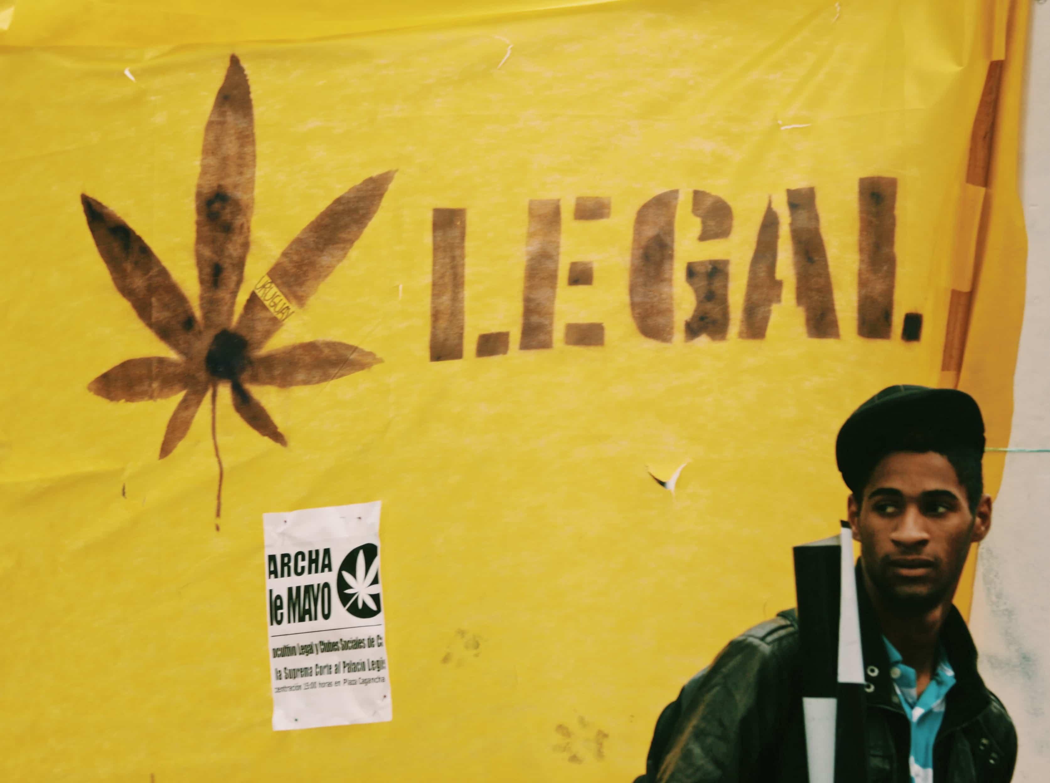 Nación Cannabis | Panorama sobre la legalización de la marihuana en Uruguay