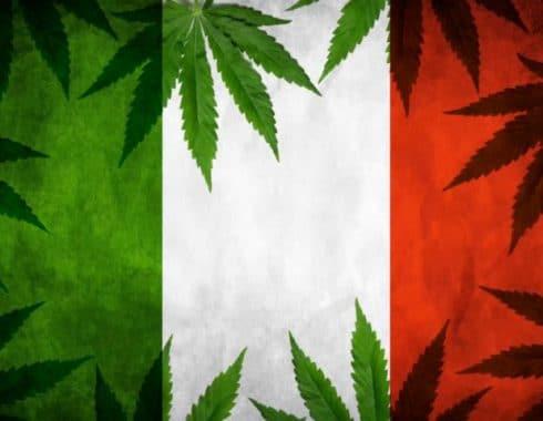 cannabis italia