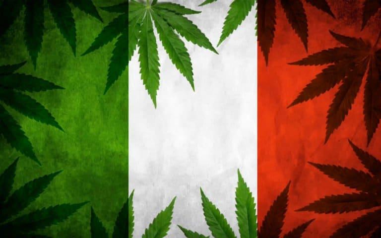 Nación Cannabis | Italia legaliza el cultivo doméstico de cannabis